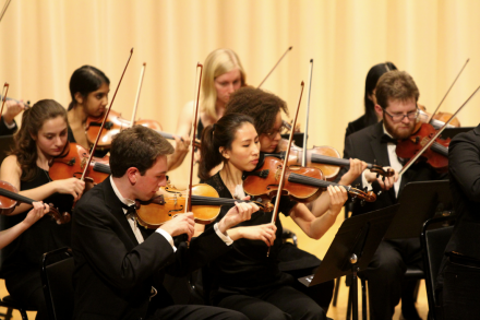 Amherst Symphony Orchestra violin players