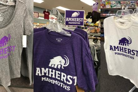 Three different t-shirt styles with purple Amherst Mammoths logo