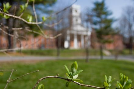 Johnson Chapel viewed behind budding spring leaves