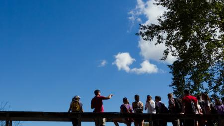 Students on a bridge in the wildlife sanctuary at Amherst College