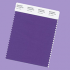 Pantone purple color swatch