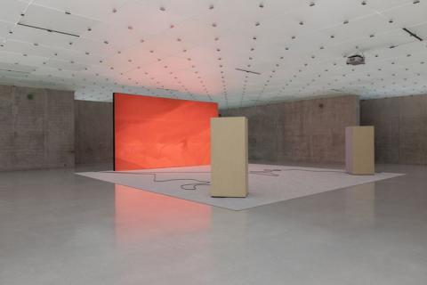 Rachel Rose; Installation, Kunsthaus Bregenz, 2017. HD Video; Courtesy Pilar Corrias Gallery, London and Gavin Brown's enterprise, New York /Rome
