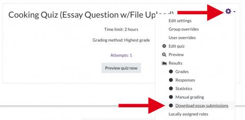 download all essay responses