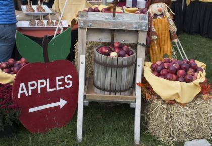 Fall Festival: Pumpkins, Scarecrows and Caramels Apples