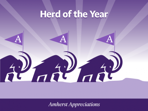 Herd of the Year. Three Mammoths walk together across the Holyoke Range, carrying flags emblazoned with the Amherst A
