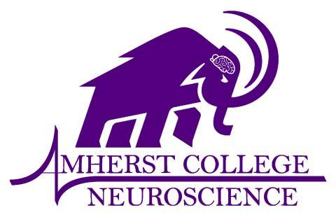 AC Neuro logo