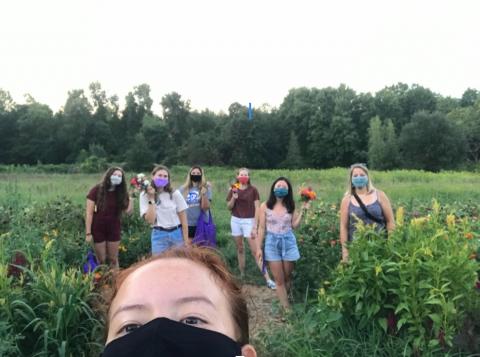 Farm with friends