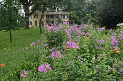 Exterior of Emily Dickinson Museum and garden