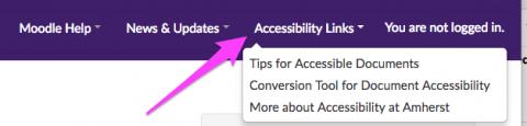 moodle accessibility links menu screenshot