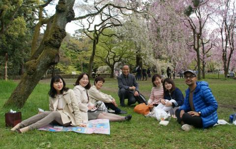 seven people smiling as they sit under a blooming cherry blossom tree