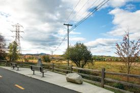 Wildlife Sanctuary trail and several benches at Amherst College
