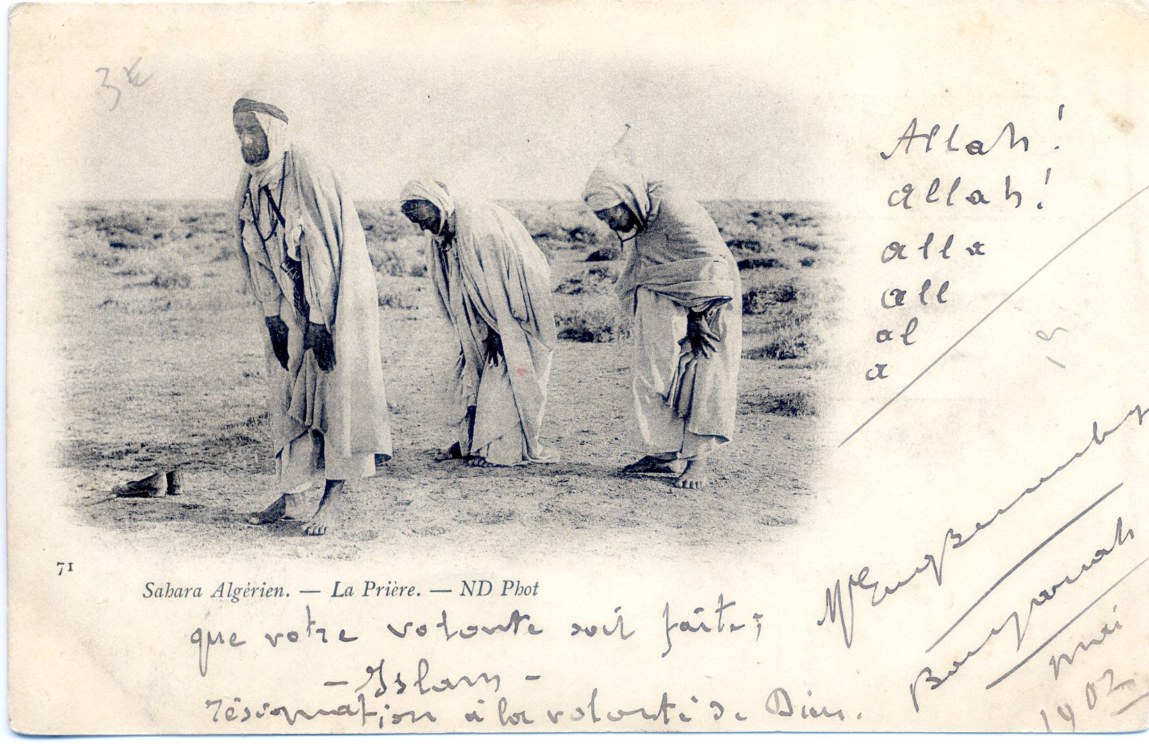 Algerian Muslims