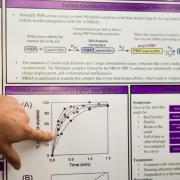 finger pointing to graph on biochemistry poster