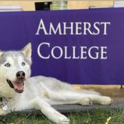 Shadow at admissions