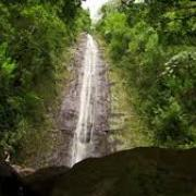 looking up at towering waterfall flanked by trees